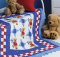 Pinwheel Teddies Quilt Pattern