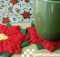 Poinsettia Coaster Pattern