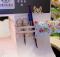 Sewing Machine Tool Belt